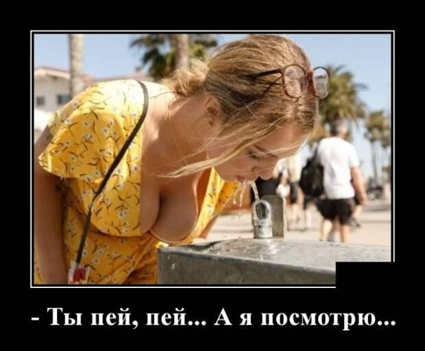 Демотиваторы. (с изображениями) | Мужской юмор, Самые смешные ...