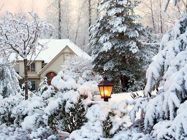 Зима на даче - чем заняться