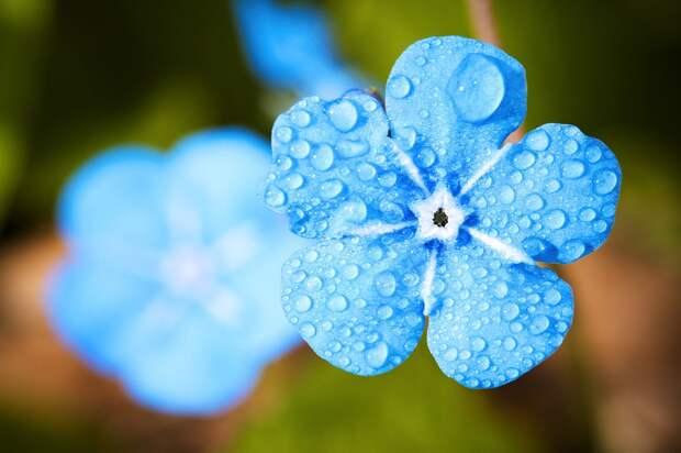 Дождливые выходные ждут Удмуртию