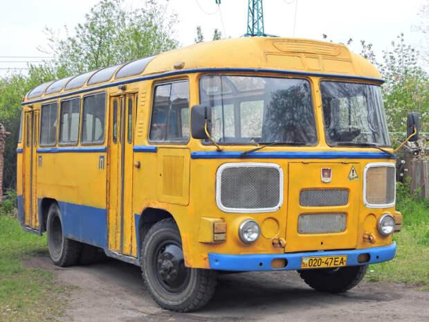 Автобусы и сейчас красят в желтый цвет.  Фото: avto-nomer.ru.