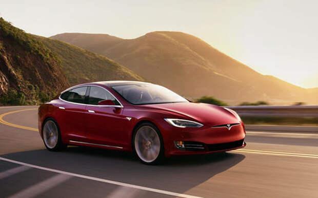Tesla своим умом подставила пьяницу-хозяина