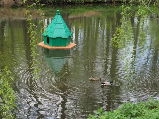 В ЮВАО продолжится акция по очистке берегов водоёмов в парках