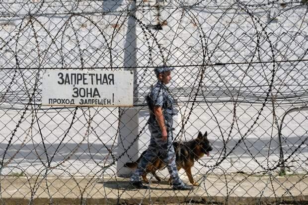 Власти поддержали законопроект, позволяющий нанимать на работу заключенных