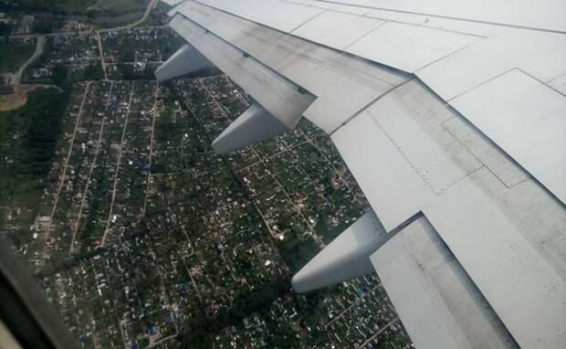 Японский пилот с инсультом отказался от госпитализации в больницу Новосибирска