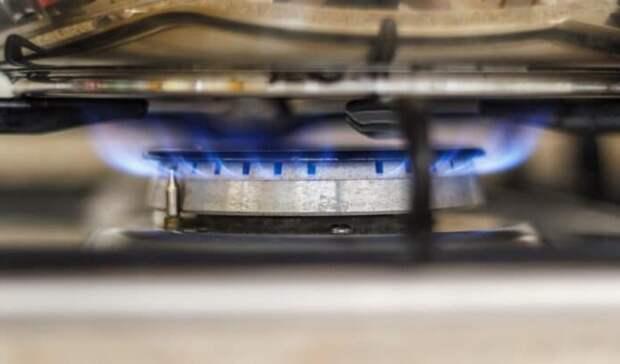 ЕРсрегионами займется внедрением программы бесплатного подведения газа кучасткам