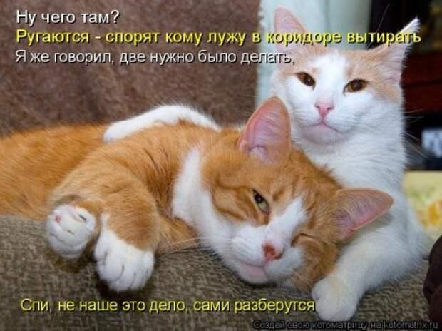 1449819888_1v