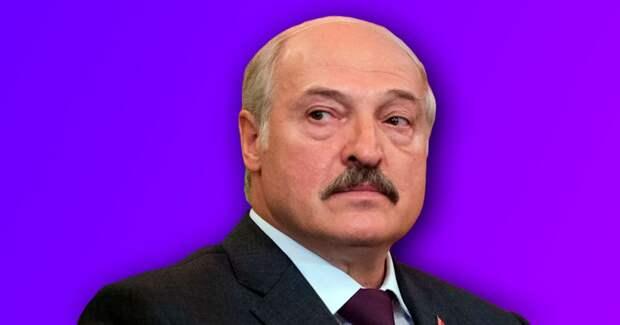 6 главных фактов о предвыборной кампании Лукашенко