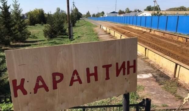 Закрыли на карантин. Омское село захватил смертельный вирус