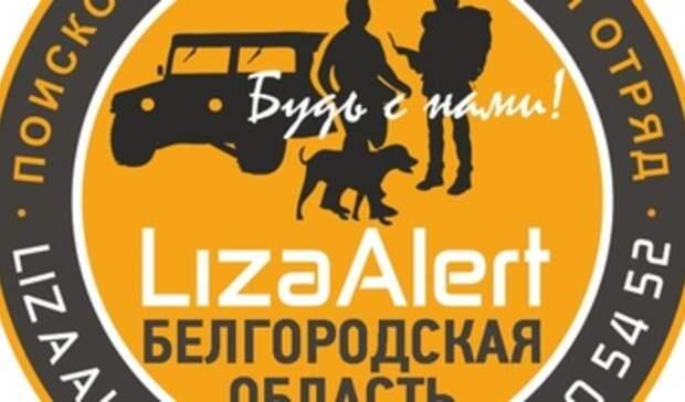 В Белгороде поисковики разыскивают 15-летнюю девочку