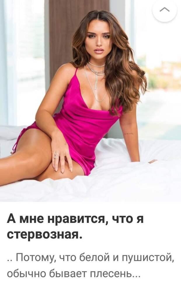 У дорог две проблемы — дураки и Россия