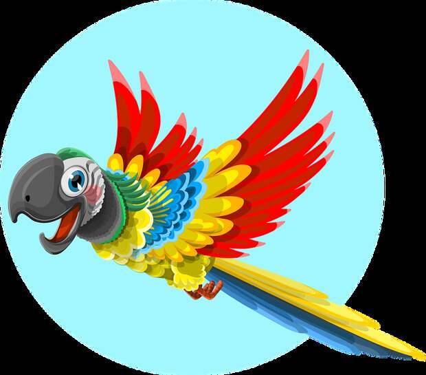 Попугай, Животных, Птица, Дикая, Ара, Перо, Тропических