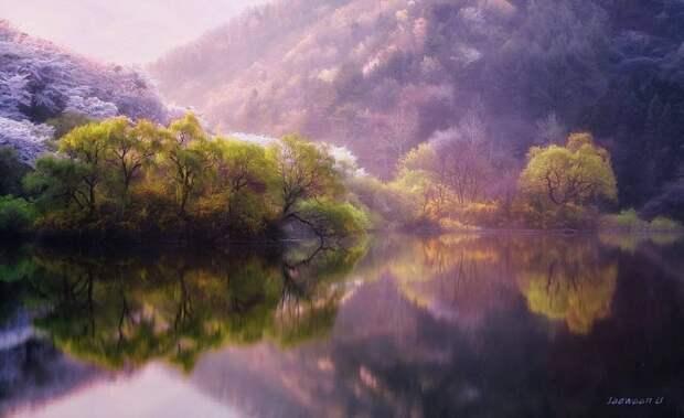 ФОТОВЫСТАВКА. Jaewoon U: идеальные отражения