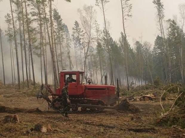 Восемь пожаров потушено в лесном фонде в Иркутской области за сутки
