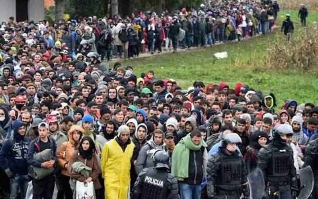 Миграционный кризис в Литве набирает обороты