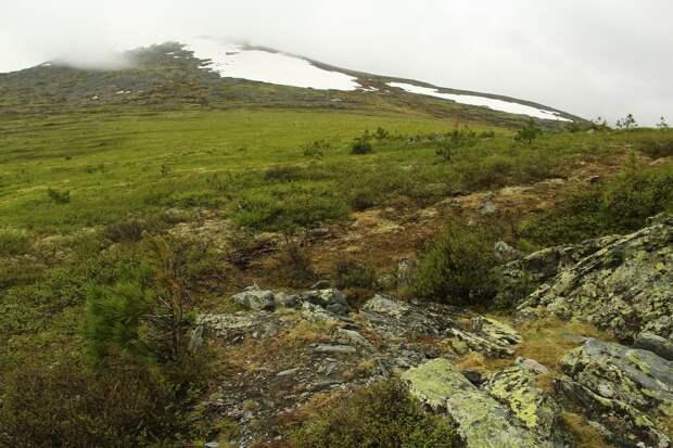 Опытный походник озвучил свою версию гибели туристов на перевале Дятлова