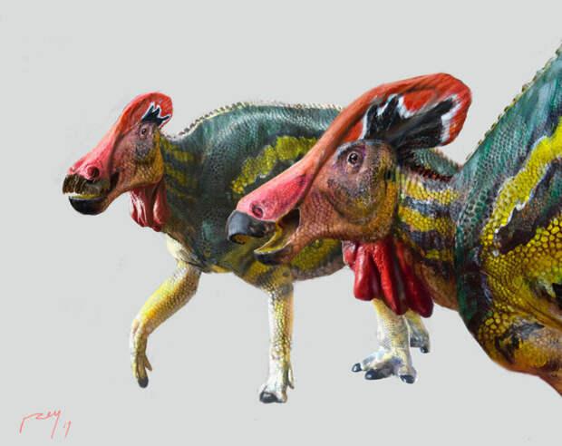 ВМексике найден новый вид «разговорчивых» динозавров