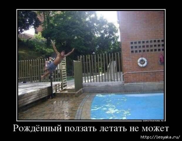 1372745863_novye-demki-4 (500x389, 105Kb)