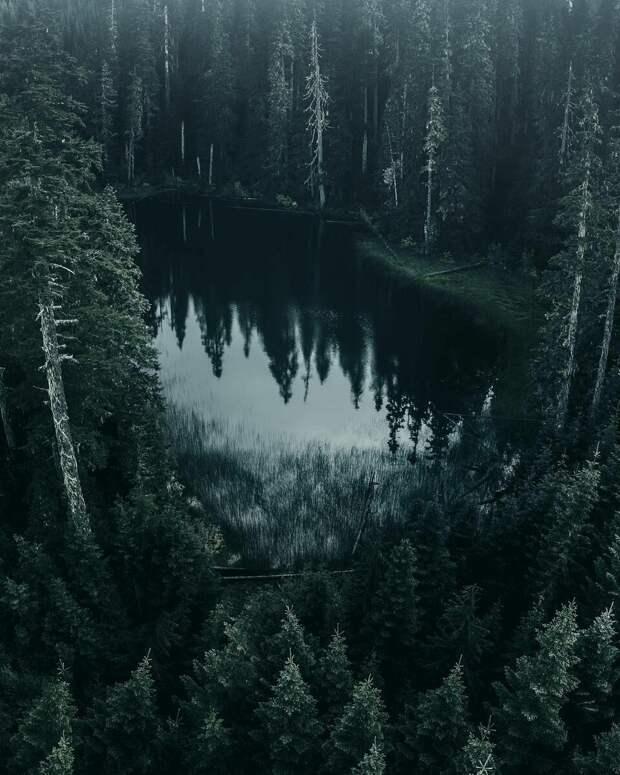 Чёрное озеро.    Источник фото: https://i.pinimg.com/originals/28/c1/17/28c11781d01c7a09623e39bc5db8a647.jpg