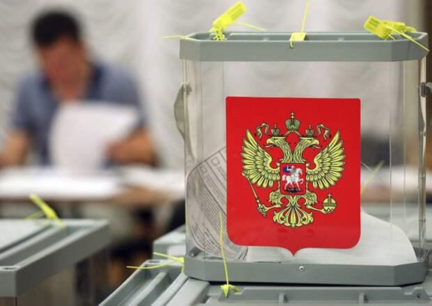 Эксперт раскрыл использование технологий воздействия на избирателей