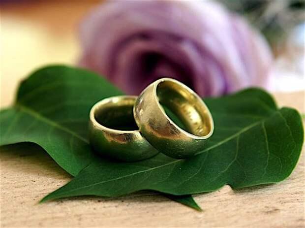 Жители Швейцарии разрешили однополым парам жениться и заводить детей