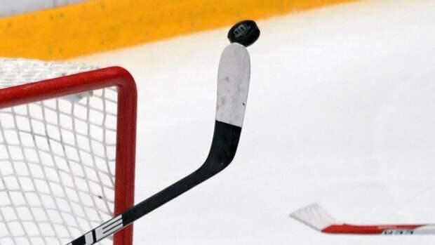 На матче детских хоккейных команд зрители устроили драку с судьями