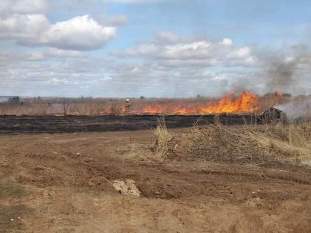 На улице Берша в Ижевске загорелось поле
