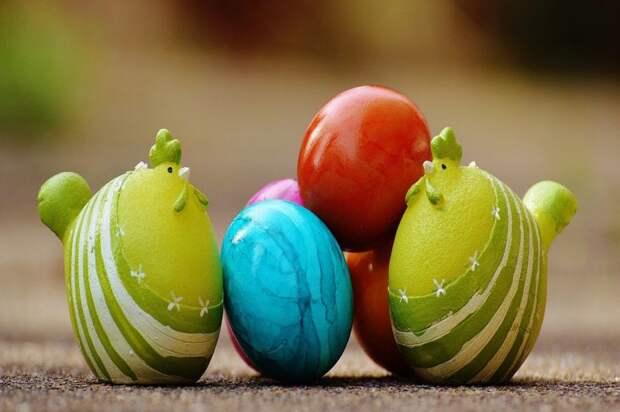 Чем полезны куриные яйца: что будет, если начать есть каждый день