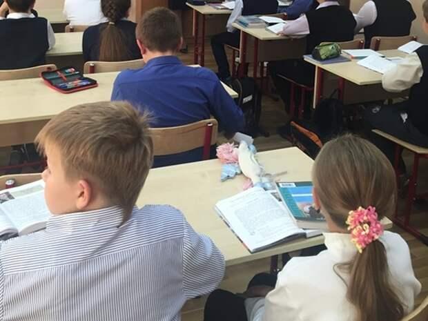 «Сейчас будем трахать училку»: в школе Таганрога третьеклассник на уроке обматерил и замахнулся на педагога