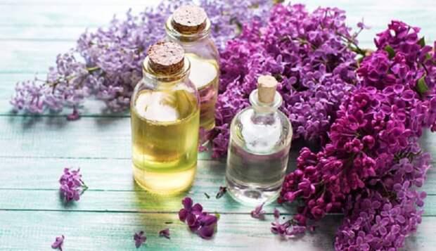 В период цветения сирени: наполните баночку растительным маслом и фиолетовыми цветками