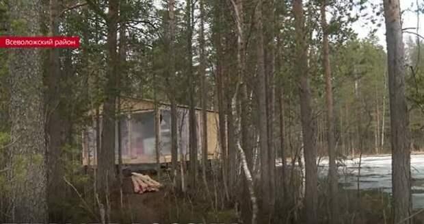Летом во Всеволожском районе появится первый в России сафари лодж