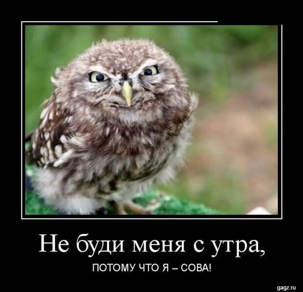 demotivator_prikol_gagz_ru_14458567