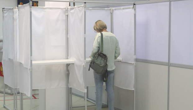 Явка на голосование по Конституции в Подмосковье была выше, чем на федеральных выборах