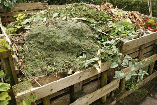 4 секрета хорошего компоста