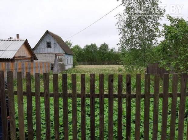 Скоро лето, а за границу - сложно. Какие дачи около Могилева можно очень дешево купить прямо сейчас.