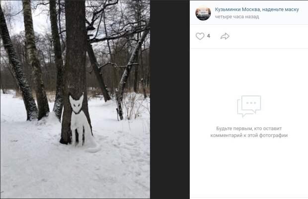 Фото дня: в Кузьминском лесу притаился белый лис