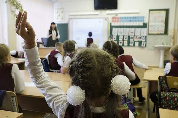 В Госдуме прокомментировали идею создать общую систему зарплат для учителей