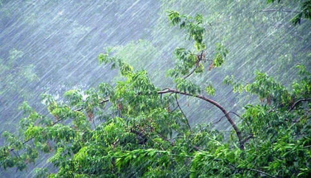 С понедельника в Краснодарский край вернутся дожди
