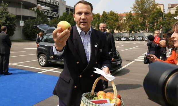 Отказ России от польских яблок вынуждает Варшаву вспомнить о позабытой акции