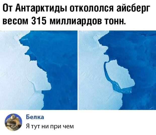 Подборка прикольных фото №2217 (59 фото)