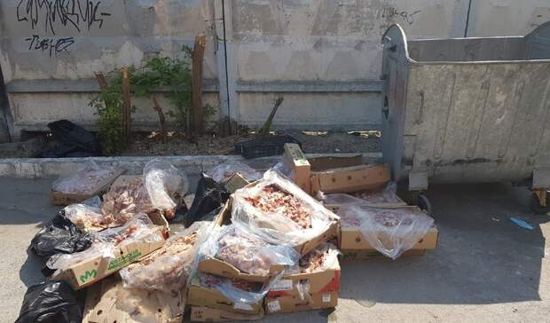 ВТюмени около контейнерной площадки наКомсомольской решили утилизировать биоотходы
