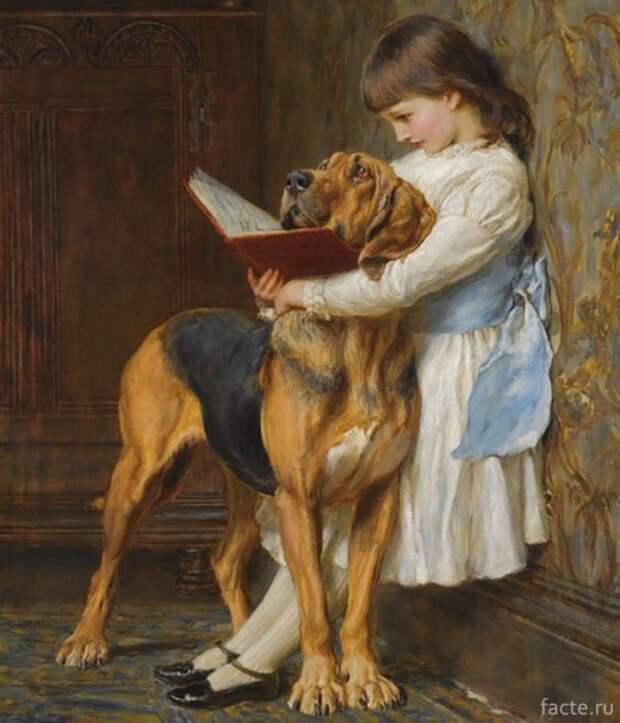 За чтением книги