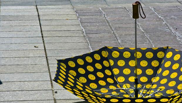 «Желтый» уровень опасности погоды из‑за дождя объявили в Московском регионе на 21 мая