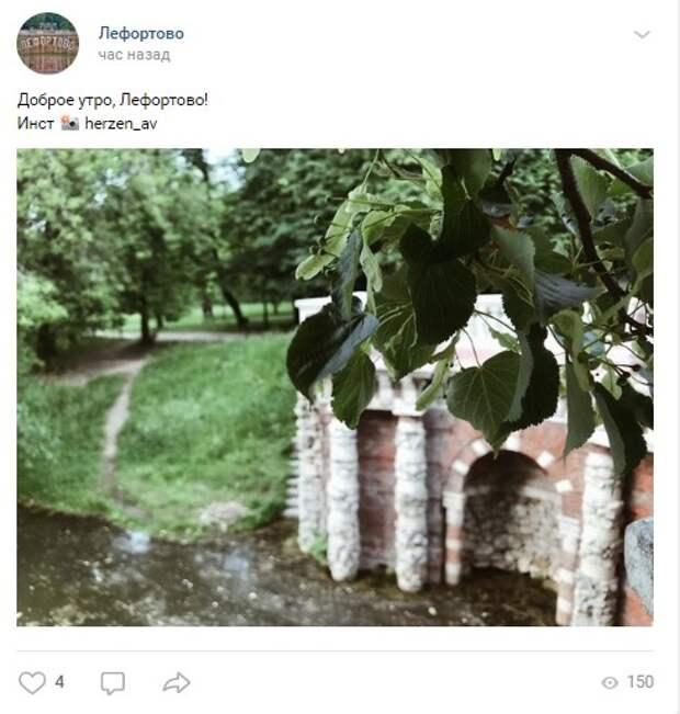 Фото дня: житель Лефортова сфотографировал «зеленую» часть района