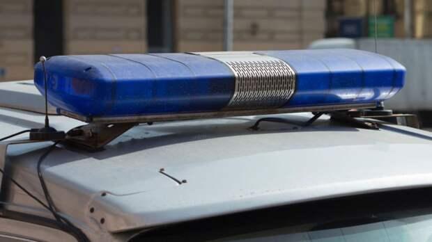 Стали известны подробности убийства 12-летней девочки под Нижним Новгородом