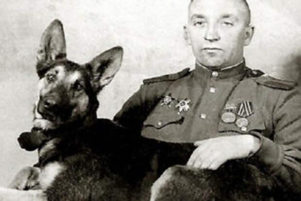 Джульбарс. Пёс, которого на Параде Победы несли на руках