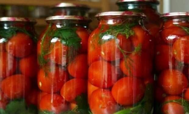 Помидоры Царские без уксуса. Рецепт вкусных и сладких помидор с небольшой кислинкой