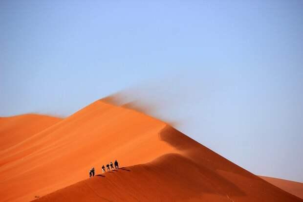 Пастухи нашли клад ИГ на 25 млн долларов в иракской пустыне
