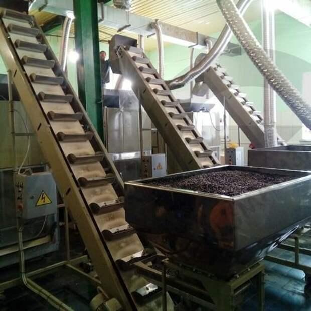 6. Оборудование для жарки семечек заводы, привычные продукты, производство, ферма