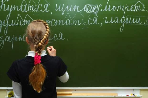 Латвийский учитель устроил «беспредел» и издевался над русскоязычным первоклассником