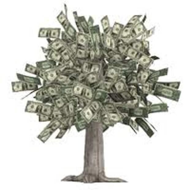 Главное условие ритуала по выращиванию денег - это время его начала – первые часы новолуния.